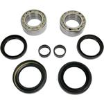 Pivot Works Wheel Bearing Kit - Double Seal - Front - Honda