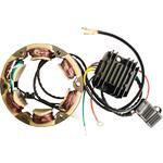 Rick's Motorsport Lithium-ion Compatible Charging Kit - Honda