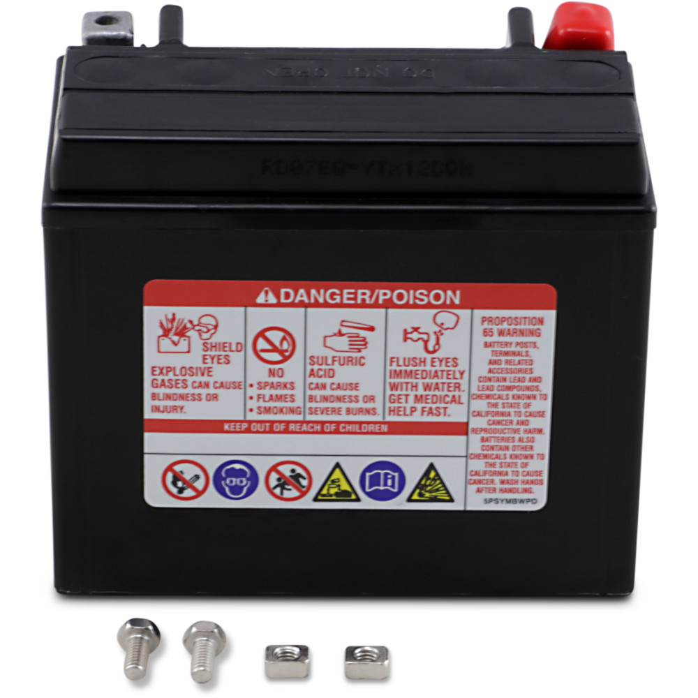 Yuasa AGM Battery - YTX12
